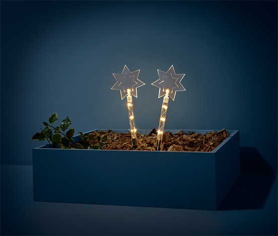 2 LED-Gartenstecker